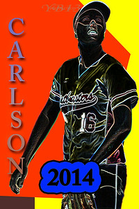 CARLSON 2014 N